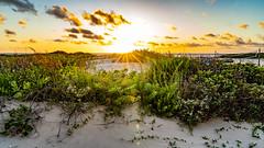 SouthPadreIsland_519-2 (allen ramlow) Tags: south padre island texas tx sunrise landscape seascape sun clouds sand water gulf coast beach sony alpha
