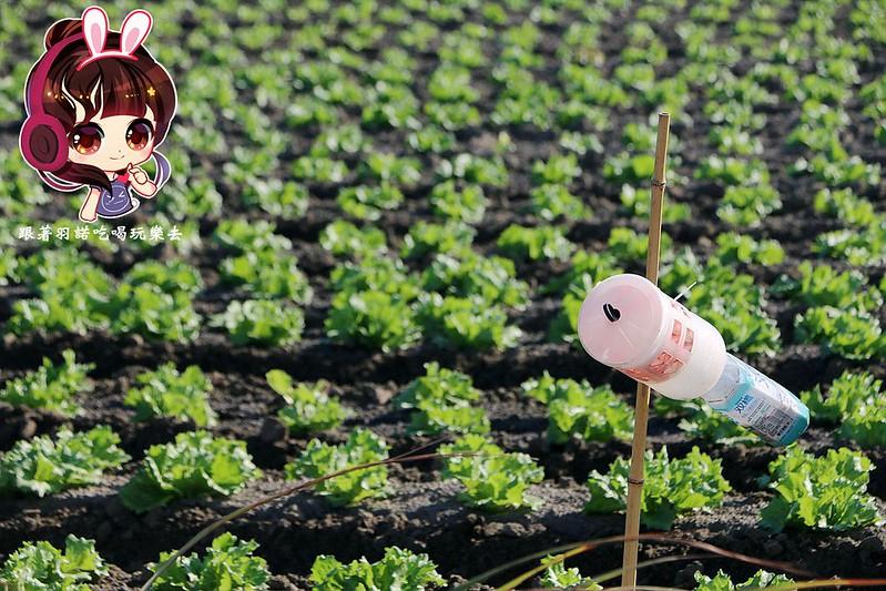 晁陽綠能體驗農場062