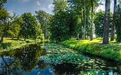 Alexandria park (kud4ipad) Tags: 2017 alexandria hdr kiev ukraine dendropark tree park