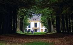 The Wedding Shoot. (Johan Moerbeek) Tags: bride groom heiloo heilooerbos wedding canon moerbeek autumn
