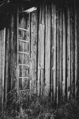 Old Colorado Barn (Log Home Finishing) Tags: barn colorado mountains blackandwhite ladder light old decay
