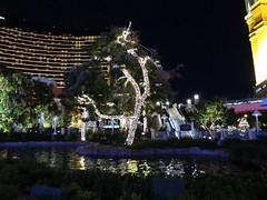 IMG_0779 (grooverman) Tags: las vegas trip vacation december 2019 casino night strip canon powershot sx530
