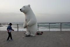 Белый медведь (unicorn7unicorn) Tags: набережная тельавив море волны мальчик медведь 365the2019edition 3652019 day358365 24dec19 30