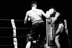 48870 - Hook (Diego Rosato) Tags: boxe boxing pugilato ring match incontro nikon d700 tamron 2470mm rawtherapee bianconero blackwhite pugno punch hook gancio
