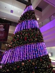 IMG_0784 (grooverman) Tags: las vegas trip vacation december 2019 casino night strip canon powershot sx530 fashion show mall