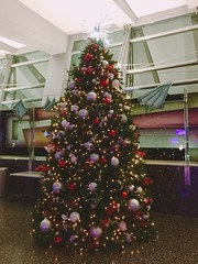 Christmas Tree at San Diego Airport (hinxlinx) Tags: christmas christmastree tree decorations hinxlinx ericlynxlin elynx 軒