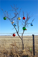 Minimalist North Texas Christmas Tree (Small Creatures) Tags: texas fotomat24mm youngcounty rt251 nikond40 d40 fence barbedwire range decoration christmastree rural middleofnowhere isolated