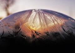Freezing Bubble..x (Lisa@Lethen) Tags: frozen freezing bubble ice morning