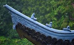 Shanghai - Rainy Roof (cnmark) Tags: china shanghai changning district huashan road fudan middle school zhongxue roof dach detail rain regen figuren figures 中国 上海 长宁区 华山路 复旦中学 ©allrightsreserved
