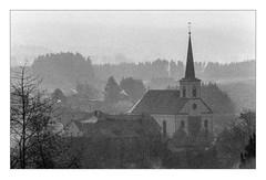 Foggy day in Kell am See (werner-marx) Tags: analog film meinfilmlab 35mm canonftb ilforddelta3200 kellamsee fog foggy mist filmgrain