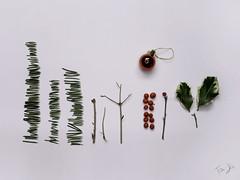 svendo kit natalizio.. 🎄 Come nuovo! (Antonio Iacobelli (Jacobson-2012)) Tags: christmas kit ikea clearance sale mounting box bari fujifilm mediumformat