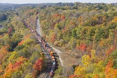 Mile 4.7 (Nicoli OZ Mathews) Tags: cnrail cn dundas sky fall fallcolours trains train railroad railway trees beautiful canada canoncanada canon ontario yellow red forest cn148