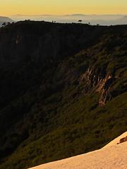 Amanecer en el Cordón de Ránquil (Mono Andes) Tags: andes chile chilecentral regióndelaaraucanía trekking amanecer sunrise araucaria lonquimay backpacking