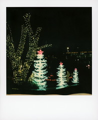Grand Park Christmas (tobysx70) Tags: polaroid originals color 600 instant film slr680 christmas tree grand park dtla downtown los angeles la california ca decorated fairy lights star lit illuminated night nocturnal merry happy 2019 vanishing point toby hancock photography
