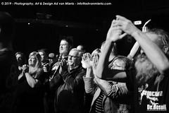 2019 Bosuil-Het publiek bij The Doors in Concert 2-ZW