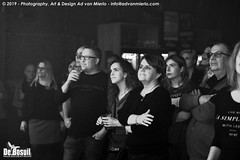 2019 Bosuil-Het publiek bij Sylvie Stone en Tim Akkerman & The Ivy League 5-ZW
