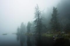Nebel am See (Fotodesign Behrend) Tags: nebel fog foggy landscape landschaft sony alpha 7r natur outdoor berg mounten