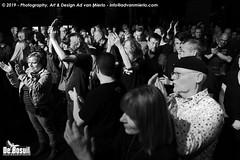 2019 Bosuil-Het publiek bij The Doors in Concert 7-ZW
