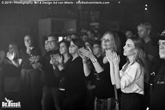 2019 Bosuil-Het publiek bij Sylvie Stone en Tim Akkerman & The Ivy League 11-ZW