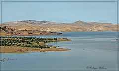 Lac Nzala El Oudaïa © (philippedaniele) Tags: maroc fèsmeknes lac lacdebarrage sidichaled nzalaeloudaïa