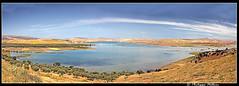 Lac Nzala El Oudaïa© ou lac de barrage deSidi Chaled (philippedaniele) Tags: maroc fèsmeknes lac lacdebarrage sidichaled nzalaeloudaïa fabuleuse