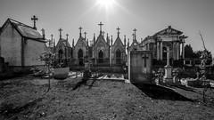 Cemitério de Agramonte (USpecks_Photography) Tags: cemetery cemitério cemitériodeagramonte porto crosses graves shrines portugal bw remembrance reverence laowaoptics9mmf28zerod laowa9mmf28zerod