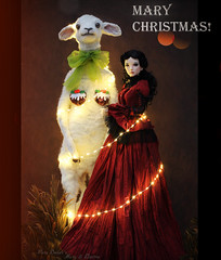 Mary Christmas everyone! 😊🎄✨🌹 (pure_embers) Tags: pure embers laura uk pureembers photography sculpture anthropomorphic portrait textile sphinx england whimsical lamb sheep taxidermy animal mary doll collector adele morse bjd ball jointed supia rosy christmas lights happy puddings ayuana