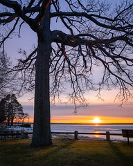 Lakeside Sunset (John Brighenti) Tags: blue sky sunset dusk evening light shadow red orange yellow ice snow winter christmas holiday december 2019 outside outdoors nature newyork upstate statepark oneida veronabeach landscape photography flickr purple sony alpha a7rii ilce7rm2 bealpha sonyshooter gmaster gm lens glass lowlight lake water frozen shore beach tree grass park sel24f14gm