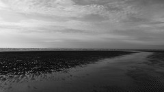 Black & White Low Tide, West Witterings (M.T.A.V) Tags: bw blackandwhite blackwhite monochrome black white seaside southcoast sea south seashore sand beach bythebeach britishcoast bythewater coast canon canoneos750d canon750d westsussex water westwittering cold clouds sky efs1855mm photography photograph peaceful ripple lowtide tide tidal