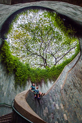 Fort Canning Park, Singapore (fandarwin) Tags: fort canning park singapore darwin fan fandarwin olympus omd em10
