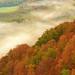 Mas Otoño - More autumn