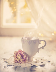 Chritsmas tea (Ro Cafe) Tags: linen rug cup tea homely flower dianthus window lights cozy stilllife gift textured nikkor105mmf28 sonya7iii