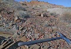 Jasper (Ron Wolf) Tags: blm curtisformation earthscience geology jasper jurassic mesozoic quartz sanrafaelreef erosion mineral mineralogy nature weathering utah