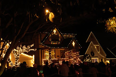 2019-12-23 Night life on Peacock Lane (Mary Wardell) Tags: peacocklane portland oregon night afterdark christmas seasonal lights canon80d