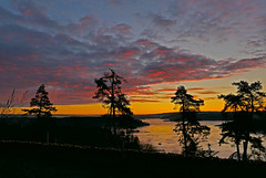sunrise (Leifskandsen) Tags: sunrise water bay coast norway nature sandvika bærum camera leica living leifskandsen leif skandsenimages scandinavia skandsen sea archipelago