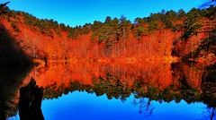 Erikli Dipsiz Lake reflections (Bkutlak H.D) Tags: yalova erikli turkey dipsiz lake reflections reflection tree f flickr flickrcentral fine fantastic forest creative collection color composition sky sun silhouette shadow shadows work water