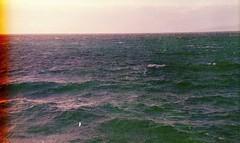 (Victoria Yarlikova) Tags: film analog 35mm zenit122 darkroom scan waterscape pellicolascaduta filmphotography seascape плёнка nostalgic grain filmgrain expiredfilm epsonperfectionv700 scanfromnegative retrocolours waves sovietcamera зенит pellicola analogue analogphotography mare sicilia sicily analognature stormy rainy