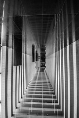 Tunnel (damianf5088) Tags: bw blackwhite blackandwhite architecture buliding structure stairs ceiling canon eos 1200d sigma 816 art wiide angle wideangle indoor inside symetric reflection