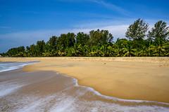 India - Arabian Sea - Kerala - Marari Beach - 1924 (Peter Goll thx for +14.000.000 views) Tags: mararibeach z6 landscape landschaft beach strand palme nikonz6 arabischesmeer bach sea mirrorless meer palm indien ocean spiegellos kerala mararikulam cghearthcom arabiansea nikonz seascape nikkor 2019 nikkor1430mm nikon alappuzha