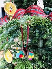 creativity for Christmas tree (Radu Andrei B) Tags: