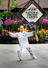 Tai Chi Practitioner (ashockenberry) Tags: ashleyhockenberryphotography botanical gardens person tai chi white woman native beautiful beauty vacation travel tourism tropical exotic flowers floral singapore asian pose activity exercise