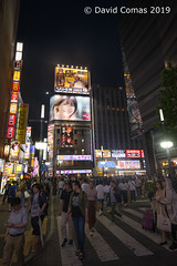 Tokyo - Shinjuku (CATDvd) Tags: nikond7500 日本国 日本 stateofjapan nippon niponkoku nihonkoku nihon japón japó japan estatdeljapó estadodeljapón catdvd davidcomas httpwwwdavidcomasnet httpwwwflickrcomphotoscatdvd july2019 architecture arquitectura building edifici edificio kantōregion kantōchihō regiódekantō regióndekantō 関東地方 tokio tōkyō tokyometropolis tōkyōto tòquio 東京 東京都 shinjuku shinjukuku 新宿区 two travelplanet nikonflickraward flickrtravelaward