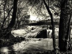 Se libérer de son lit... / Get out of (river)bed... (vedebe) Tags: sépia noiretblanc netb nb bw monochrome paysages eau riviere landscape
