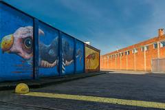 The colour wall II (jefvandenhoute) Tags: belgium belgië antwerpen merksem wall muralart