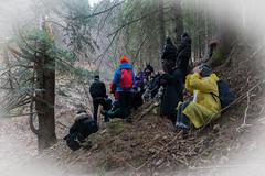 THE BROKEN SPRUCE (LitterART) Tags: excursion exkursion wald forest akademie sonyrx100iv monochrome