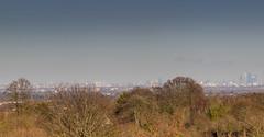London Panorama (nicklucas2) Tags: landscape london epsom