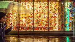 WALL GARDEN (ajpscs) Tags: ©ajpscs ajpscs 2019 japan nippon 日本 japanese 東京 tokyo shinjuku city people ニコン nikon d750 tokyostreetphotography streetphotography street shitamachi night nightshot tokyonight nightphotography citylights tokyoinsomnia nightview strangers urbannight urban tokyoscene tokyoatnight rain 雨 雨の日 cityrain tokyorain nighttimeisthenewdaytime lostnight noplaceforthesun anotherrain umbrella 傘 whenitrainintokyo arainydayintokyo lettherainshinein ginza