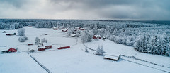 Gårdarna i Pörkenäs (Mika Lehtinen) Tags: winter finland jakobstad pörkenäs fäboda snow tree woods forest field fromabove phantom elevateg sky morning houses hous red white december christmas old oldhouses redhouses dji phantom4pro panorama traditional