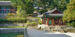 Le jardin secret ou Biwon du Palais Changdeok-gung (Séoul)