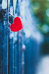 Rainy love (Peter Szasz) Tags: heart light life love emotion peaceful red bokeh shade rain beautyful rainy wet street prague bohemia calm canon canon80d 80d 50mm shallow lock locked outside outdoors fence object iron drops colourful clear city chill creative still texture blue blurred feeling promise small details water cloudy close metal green faded time timeless key bars old charles bridge karluv open wide